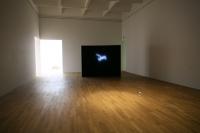 installation view Kunstmuseum Bonn